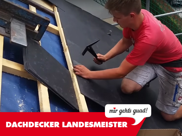dachdeckerlehrling landesmeister
